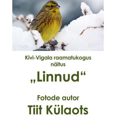 thumbnail of Näitus LINNUD Kivi-Vigalas okt 2018.